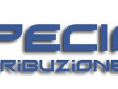 Specialist Tecnology Srl